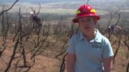 EarthSmart Fire Recovery in Colorado Springs