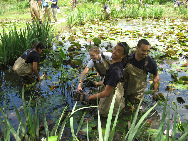 Sca Hosts Let S Move Outside Service Event At Kenilworth Park And Aquatic Garden 3bl Media