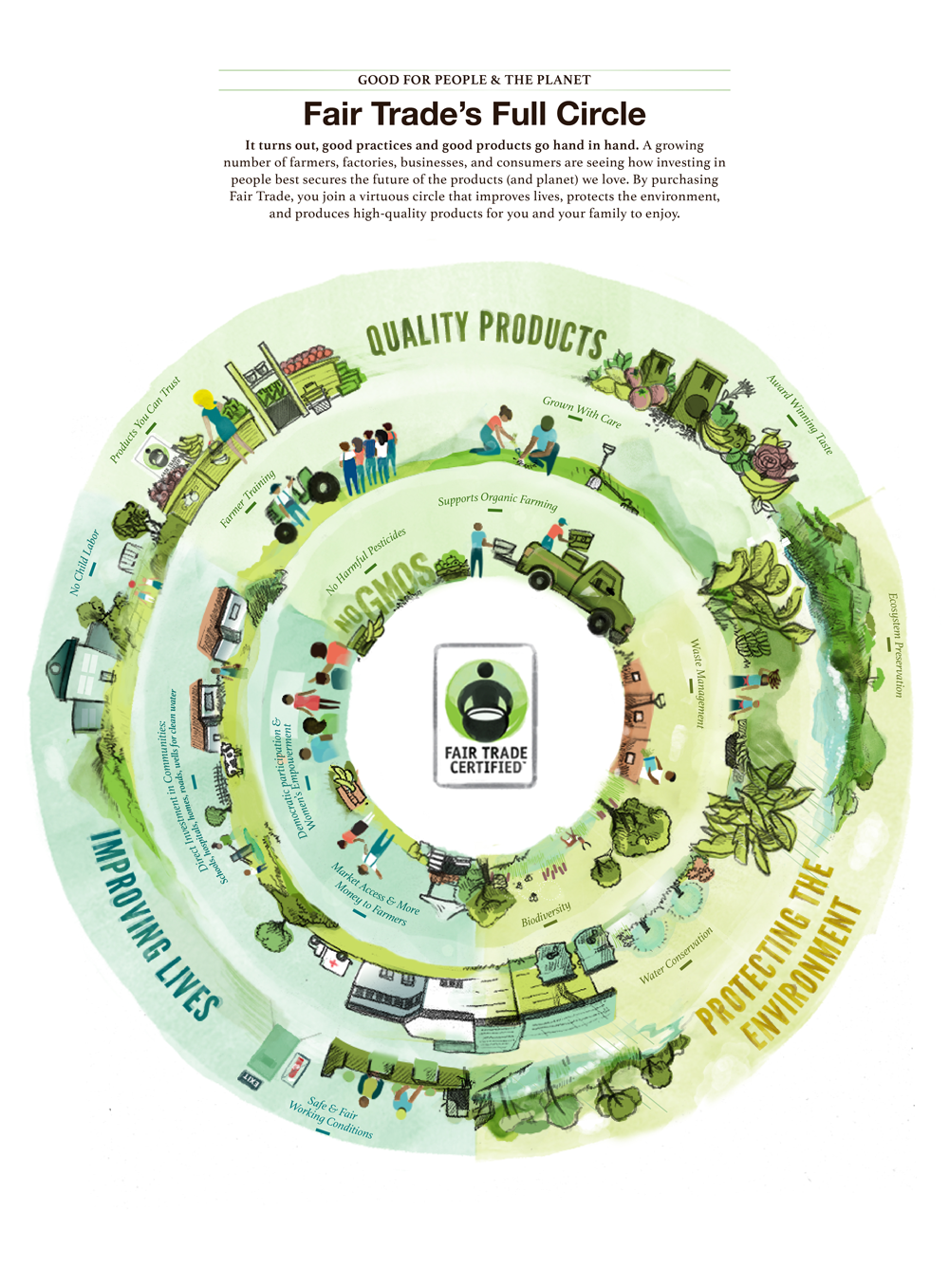 New Infographic Shows Full Circle Of Fair Trade