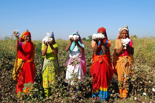Boll Branch Introduces New Fair Trade Certified Line Of