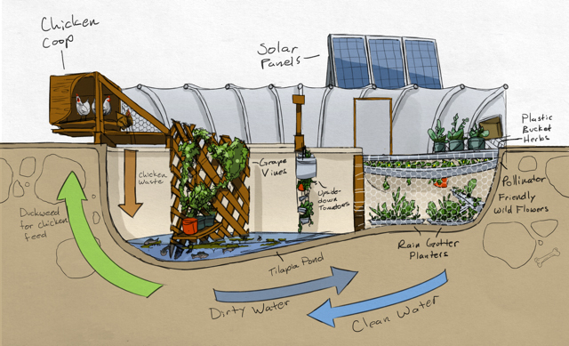 Small Aquaponic Greenhouse Design on small vegetable greenhouse, small solar greenhouse, micro aquaponics greenhouse, easy aquaponics greenhouse, private aquaponics greenhouse,