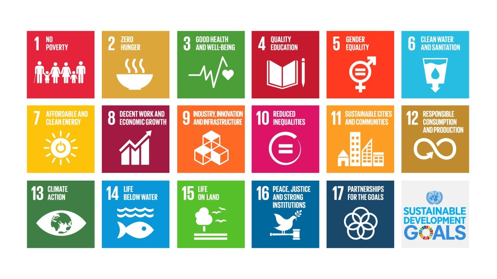 the sustainable development goals one year on 3bl media