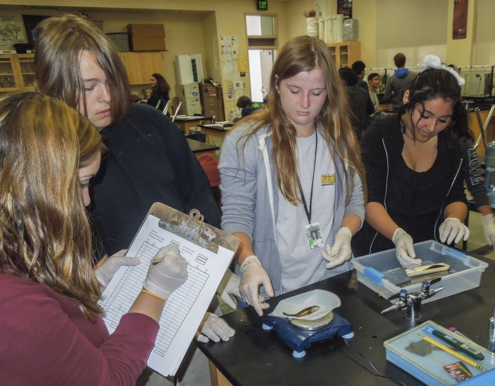 Innovative Classroom Programs ~ Students raise release seabass in innovative stem program